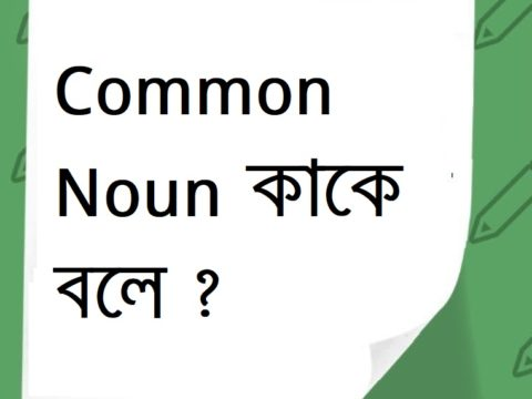 Common Noun কাকে বলে